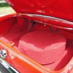 Red carpet trunk